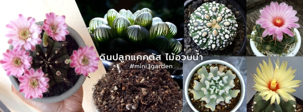 FB_Note_cover-cactus-soil