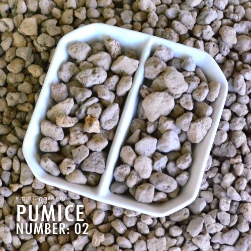 pumice02