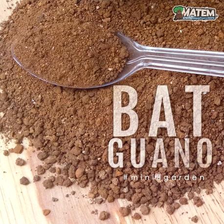 matem_p1_guano