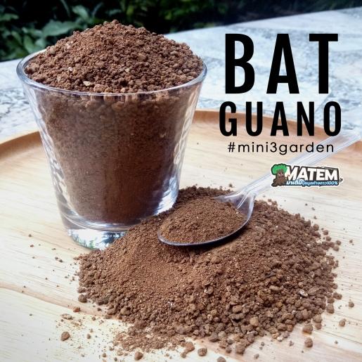 matem_p2_guano