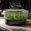 cactus_seeding7