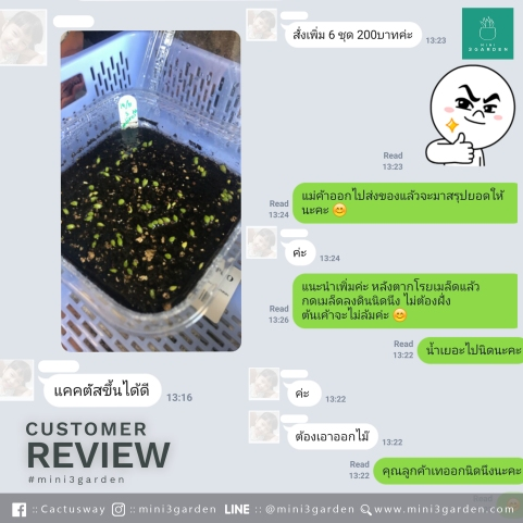 CUSTOMER_REVIEW63