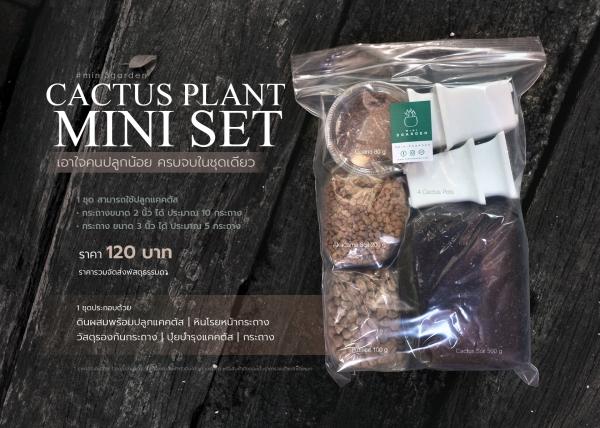 mini_set5-7