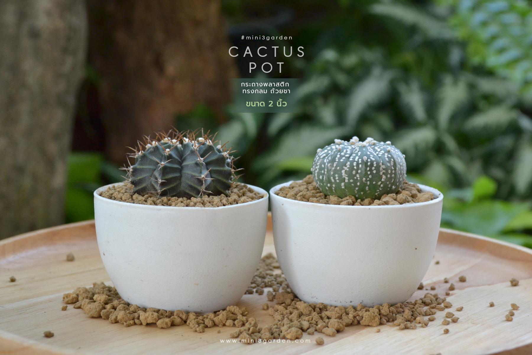 plastic_pot_2-222