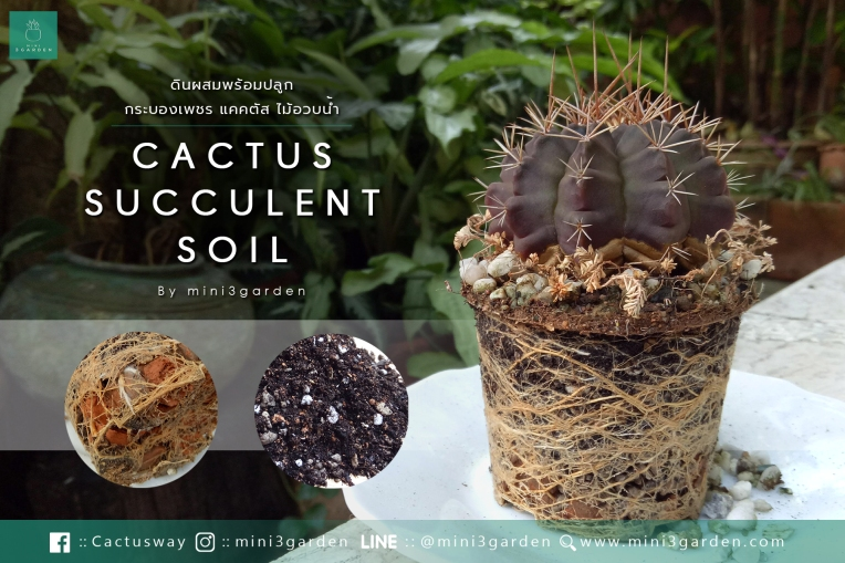 soil_review