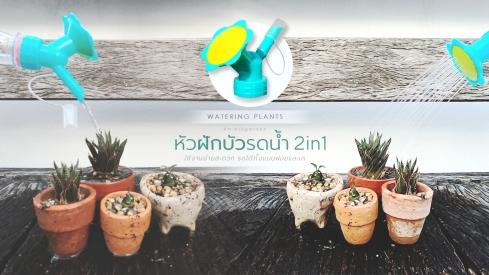 plant_accessories.jpg