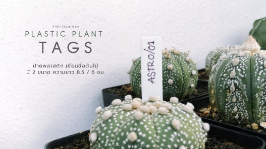 plastic_tag_16_9
