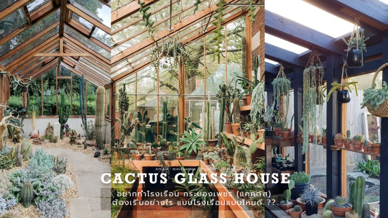 cactus_glass_house