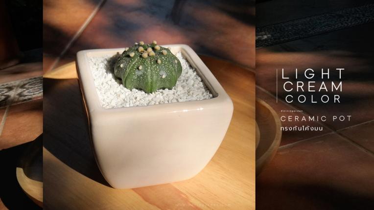 ceramic_pot_square_curve.jpg