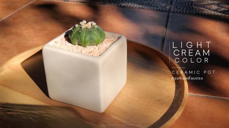 ceramic_pot_square_straight.jpg