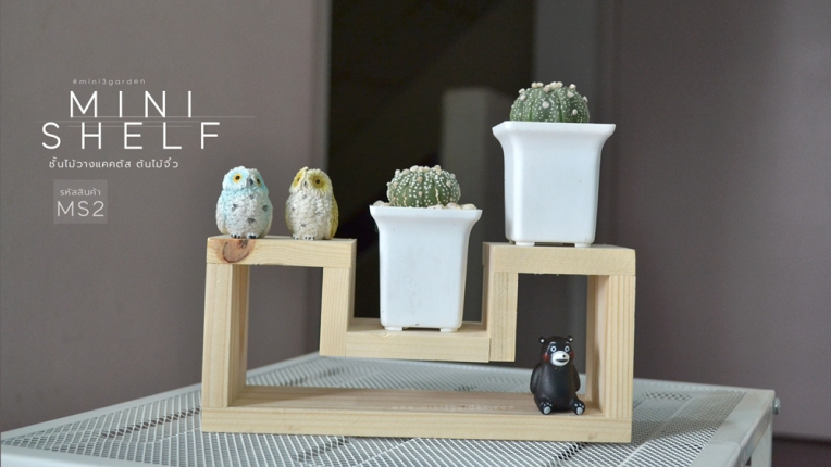 mini_shelf_MS2-3
