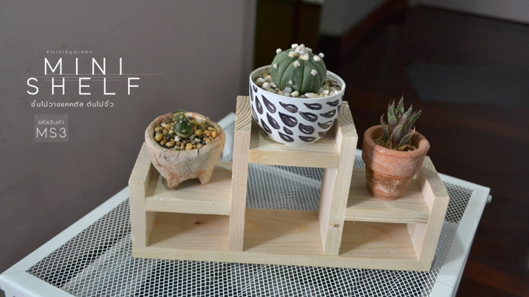 mini_shelf_MS3-2.jpg