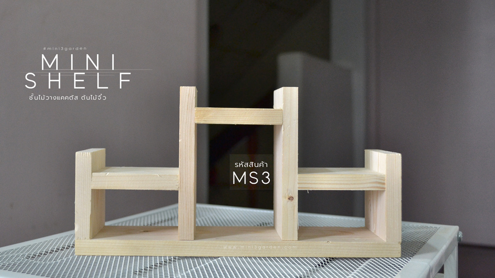 mini_shelf_MS3.jpg