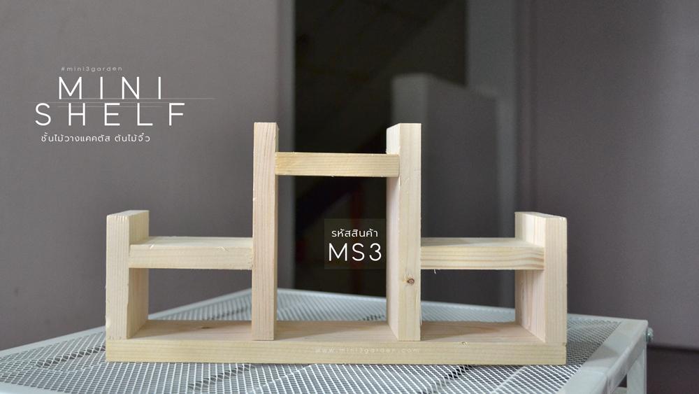 mini_shelf_MS3.jpg