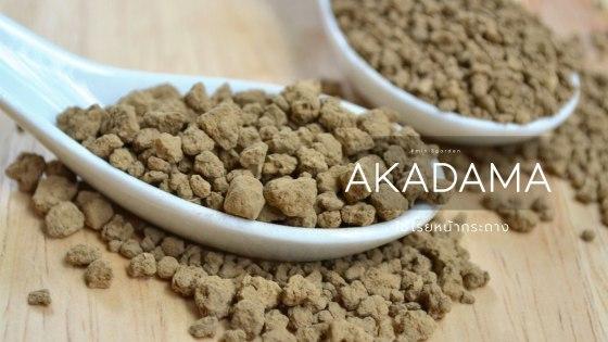 akadama-medium-set.jpg