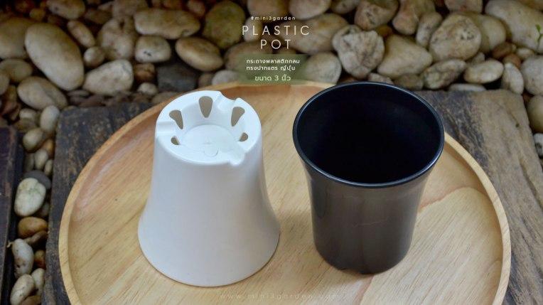 cactus-plastic-pot-japan-style-3inc-2.jpg