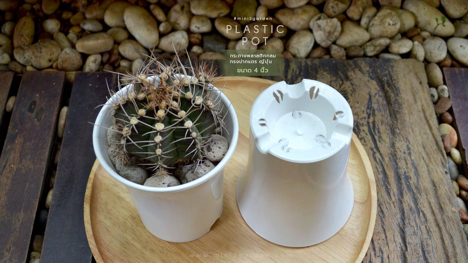 cactus-plastic-pot-japan-style-4inc-3.jpg
