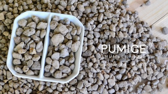pumice-medium-set.jpg